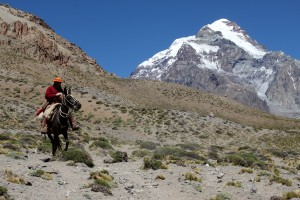 A lone gaucho & Aconcagua en route to Plaza Argentina basecamp