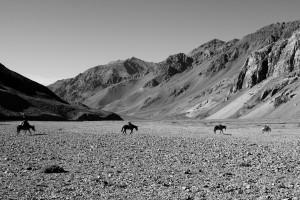 Mules crossing the Vacas Valley