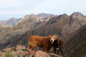 Rainie & Kona on the summit of Skier's Point with the northern Gores behind
