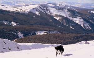 Molly and east vail, aka Benchmark Peak & Bowl