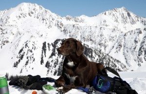 Kona catching some zzzz's on Bald's summit with East & West Partner Peaks behind