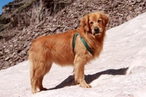 Rainie ready to climb Pyramid Peak