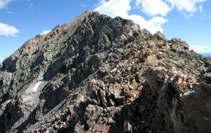 Mt. Daly's