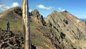 There were log poles sticking up from every little point along this section of ridge