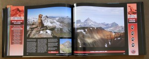 A typical two page spread for each 14er. This one is dedicated to their climb of Wetterhorn Peak