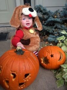 Sawyer in her dog costume that Dianne & Ken gave her