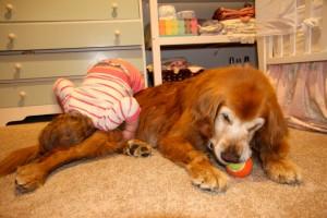 Sawyer loves burying her face in Rainie's fur