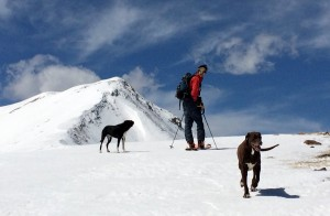 Me and the dogs on the ridge