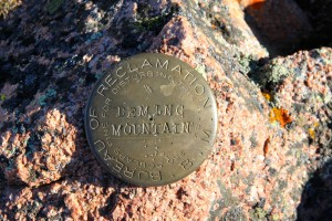 Deming Mountain's USGS summit marker