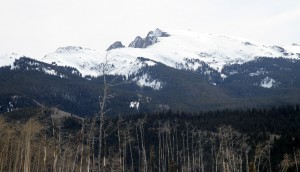 Avalanche Peak from the Lime Creek plateau area as seen this past April. The two prominent towers on its north ridge are visible