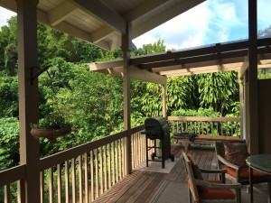 Our house's back porch