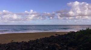 2 miles and 30 minutes in we came upon Hanakapi'ai Beach