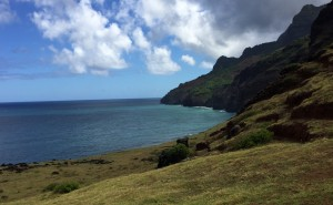 Nice meadows close to Kalalau Beach