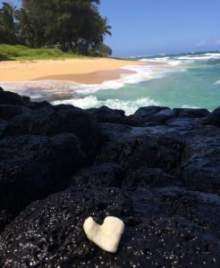 Goodbye Kauai