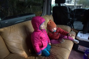 Wesley & Sawyer in the sprinter van