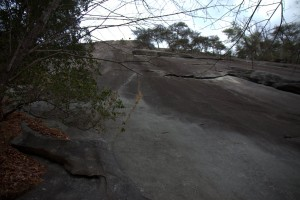 Block Route pitch (5.8) to get to Tree Ledge
