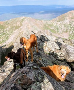 Rainie, Kona, & Khumbu on The Fly's summit
