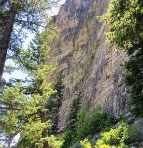 I think this gal is climbing the two pitch route called White Dads on Rope (5.11b)